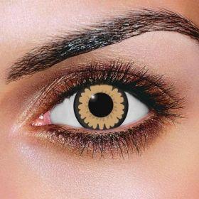 Big Eye Sexy Brown Contact Lenses