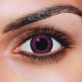Big Eye Violet Contact Lenses