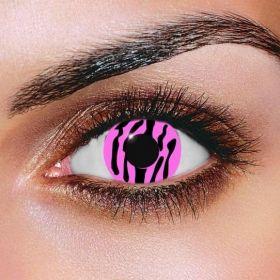 Pink Zebra Contact Lenses