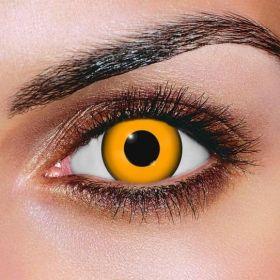 Pumpkin Contact Lenses